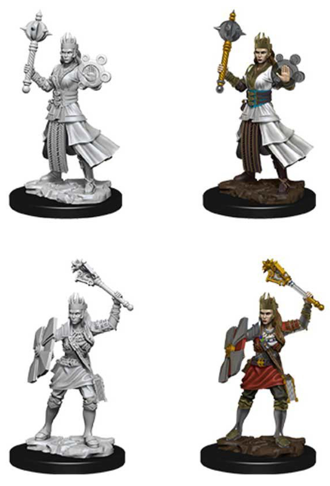 ROLEPLAYING MINIATURES -  FEMALE HUMAN CLERIC FIGURES (2) -  NOLZUR'S MARVELOUS MINIATURES