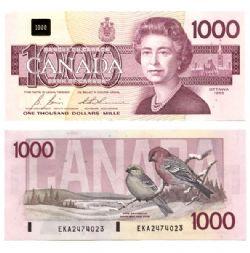 1988 -  1988 1000-DOLLAR NOTE, BONIN/THIESSEN (GUNC)
