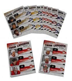 2010-11 HOCKEY -  UD O-PEE-CHEE TEAM LEADER (30 CARDS)