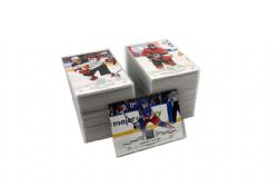 2018-19 HOCKEY -  UPPER DECK SERIES 1 WITH ROOKIE (250 CARDS)