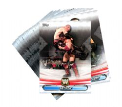 2019 WWE -  TOPPS RAW LEGENDS RING COMPLETE SET (20 CARDS)