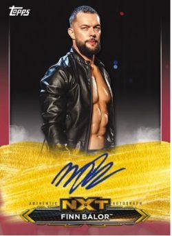 2020 WWE -  TOPPS NXT (P25/B2)