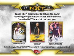 2020 WWE -  TOPPS NXT (P7/B24/C8)