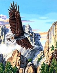 ANIMALS -  SOARING EAGLE (16