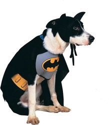 BATMAN -  BATMAN COSTUME (DOG)