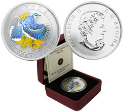 BIRDS OF CANADA -  BLUE JAY -  2010 CANADIAN COINS 06