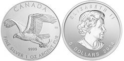 BIRDS OF PREY -  BALD EAGLE - 1 OUNCE FINE SILVER COIN -  2014 CANADIAN COINS 02