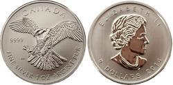 BIRDS OF PREY -  PEREGRINE FALCON - 1 OUNCE FINE SILVER COIN -  2014 CANADIAN COINS 01