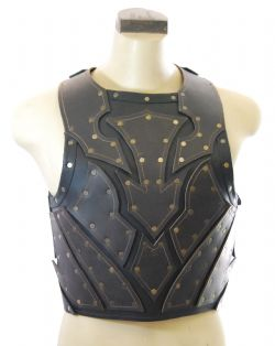BREASTPLATES -  BRODERIC BREASTPLATE (LARGE)