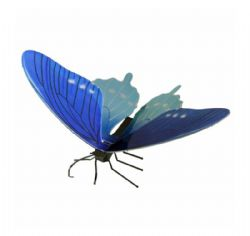 BUTTERFLIES -  PIPEVINE SWALLOWTAIL - 1 SHEET