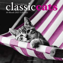 CALENDAR 2021 -  16 MONTHS -  CLASSIC CAT