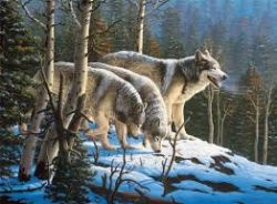 CEACO -  WOLVES R.W. HEDGE (1000 PIECES)