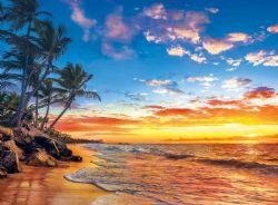 CLEMENTONI -  PARADISE BEACH (500 PIECES)