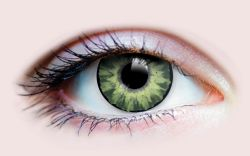 COLOURED CONTACT LENSES -  DELIGHTFUL JADE (90 DAYS)