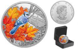 COLOURFUL BIRDS -  BLUE JAY -  2021 CANADIAN COINS 01