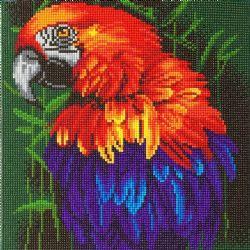 CRAFT BUDDY -  TROPICAL BIRD (12