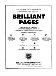 CWS WORLDWIDE -  QUADRILLED BLANK HEAVYWEIGHT PAGES (PACK OF 100)