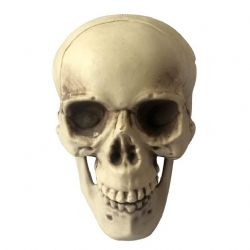DECORATIONS -  SKULL WITH JAW (8