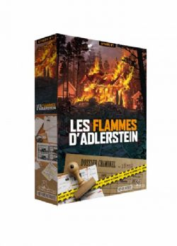 DETECTIVE STORIES -  CASE 1: THE FIRE IN ADLERSTEIN (FRENCH)