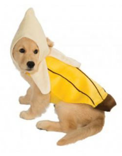 DOG COSTUME -  BANANA COSTUME (DOG)