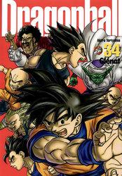 DRAGON BALL -  PERFECT EDITION 34