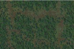 DUNGEONS & DRAGONS 5 -  BATTLE MAT - FOREST (3' X 5')