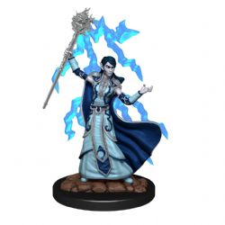 DUNGEONS & DRAGONS 5 -  FEMALE ELF WIZARD -  ICONS OF THE REALMS