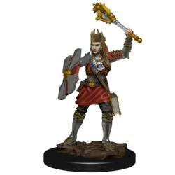 DUNGEONS & DRAGONS 5 -  FEMALE HUMAN CLERIC -  ICONS OF THE REALMS