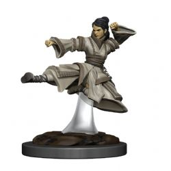 DUNGEONS & DRAGONS 5 -  FEMALE HUMAN MONK -  ICONS OF THE REALMS