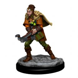 DUNGEONS & DRAGONS 5 -  FEMALE HUMAN RANGER -  ICONS OF THE REALMS