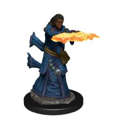 DUNGEONS & DRAGONS 5 -  FEMALE HUMAN WIZARD -  ICONS OF THE REALMS
