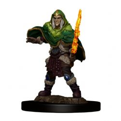 DUNGEONS & DRAGONS 5 -  MALE ELF FIGHTER -  ICONS OF THE REALMS