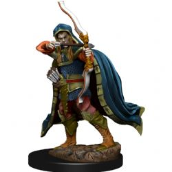 DUNGEONS & DRAGONS 5 -  MALE ELF ROGUE -  ICONS OF THE REALMS