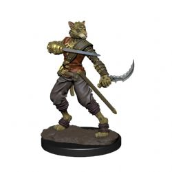 DUNGEONS & DRAGONS 5 -  MALE TABAXI ROGUE -  ICONS OF THE REALMS
