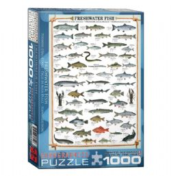 EUROGRAPHICS -  FRESHWATER FISH (1000 PIECES)