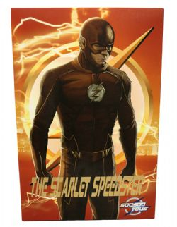 FLASH -  FLASH ACTION FIGURE (12INCHES) - USED