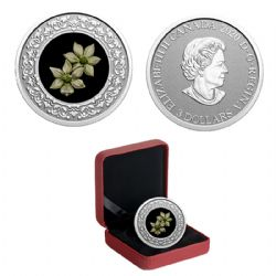 FLORAL EMBLEMS OF CANADA -  BRITISH COLUMBIA: PACIFIC DOGWOOD -  2020 CANADIAN COINS 06