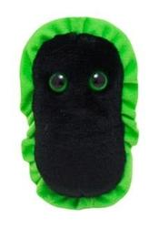 GIANTS MICROBES -  GANGRENE PLUSH (5.5