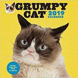 GRUMPY CAT -  2019 WALL CALENDAR (16 MONTHS)