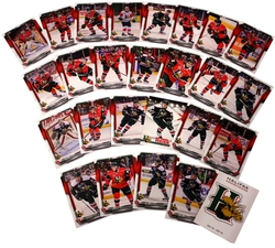 HALIFAX MOOSEHEADS -  (24 CARDS) -  2015-16