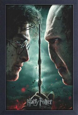 HARRY POTTER -  HARRY POTTER AND THE DEATHLY HALLOWS PART 2 PICTURE FRAME (13