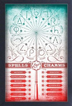 HARRY POTTER -  SPELLS & CHARMS - FRAMED PICTURE (13