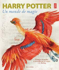 HARRY POTTER -  UN MONDE DE MAGIE