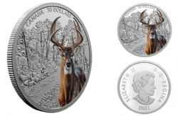 IMPOSING ICONS -  WHITE-TAILED DEER -  2021 CANADIAN COINS 03