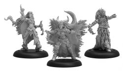 LEGION OF EVERBLIGHT -  ICE WITCHES - BLIGHTED NYSS UNIT -  HORDES