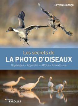LES SECRETS DE LA PHOTO D'OISEAUX