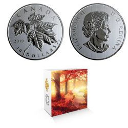 MAPLE LEAF FOREVER -  MAPLE LEAVES: RED MAPLE (ACER RUBRUM) -  2019 CANADIAN COINS 09