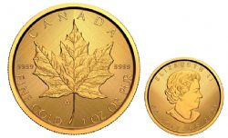 MAPLE LEAVES -  GOLD MAPLE LEAF – W MINT MARK (WINNIPEG) -  2021 CANADIAN COINS 02