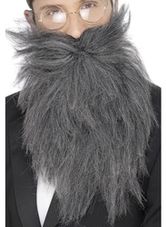 MOUSTACHES AND BEARDS -  LONG BEARD AND MOUSTACHE - GREY