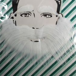 MOUSTACHES AND BEARDS -  STRUDEL BEARD AND EYEBROWS